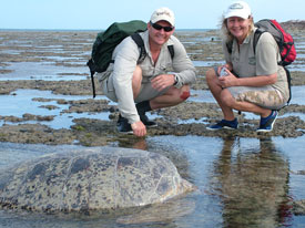 Wes and Shelley find a huge female Green Turtle stranded.